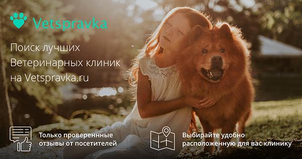 https://vetspravka.ru