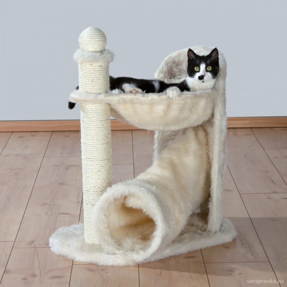 Почему кошке нужна когтеточка?